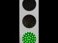semafor3-zielony